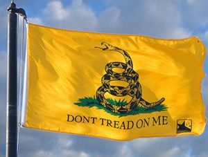2x3' Don't Tread on me Flag (Gadsten Flag)